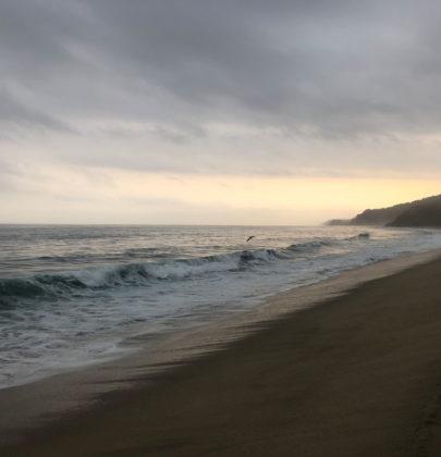 10 jours de surf à Sayulita, pueblo mágico au Nord du Mexique.